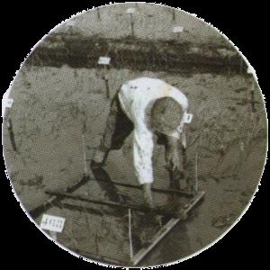 Marcação do Arroz - Arquivo Cota Arroz